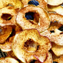 Image of Dehydrated Honeycrisp Apple with Cinnamon