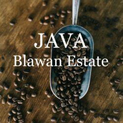Image for Java Blawan Estate by Speakeasy Coffee Co