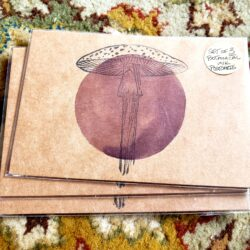 Image of Fungi Postcards, front