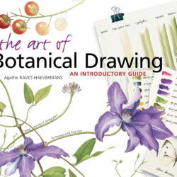 Image of the cover of the book The Art of Botanical Drawing by Agathe Ravet-Haevermans