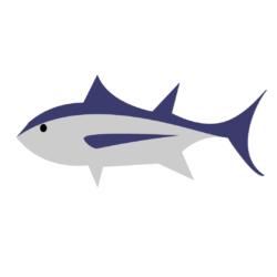 Tuna, Albacore (Bonito del Norte)
