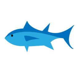 Tuna, Bluefin
