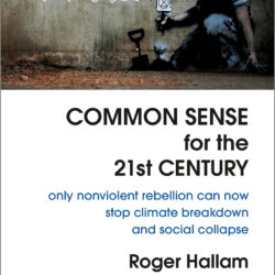 Image of the cover of Common Sense for the 21st Century by Roger Hallam