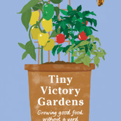 Image of the cover of Tiny Victory Gardens, by Acadia Tucker Illustrated by Emily Castle