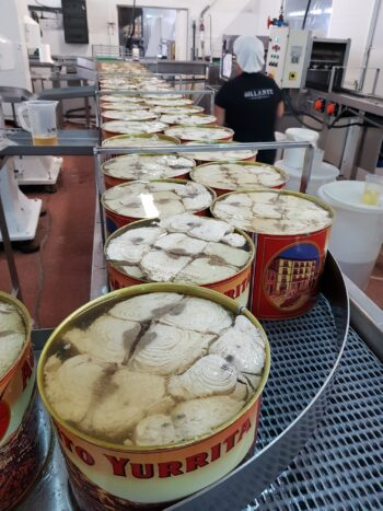 Image of large format tuna tins being filled at the factory