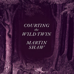 Image of the front cover of Courting the Wild Twin by Martin Shaw
